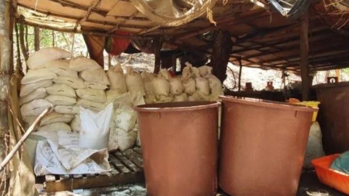 GN y Policía Estatal desmantelan cuatro laboratorios clandestinos en Sinaloa
