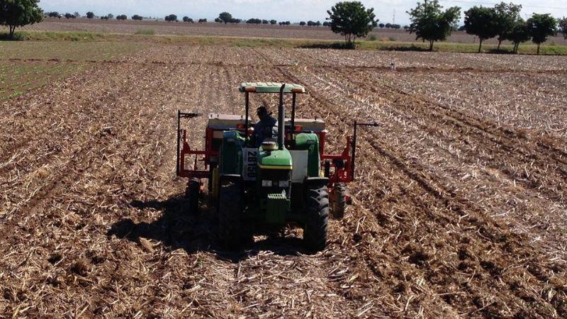 Gobierno Federal no da una respuesta positiva a los apoyos de los agricultores de Sonora