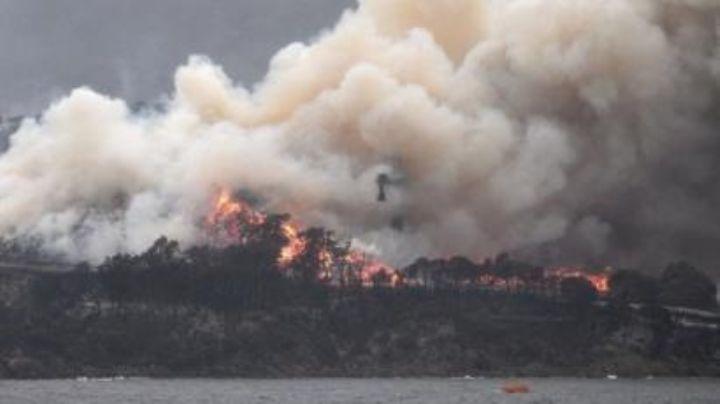 Potente incendio forestal arrasa con más de 360 hectáreas en Australia