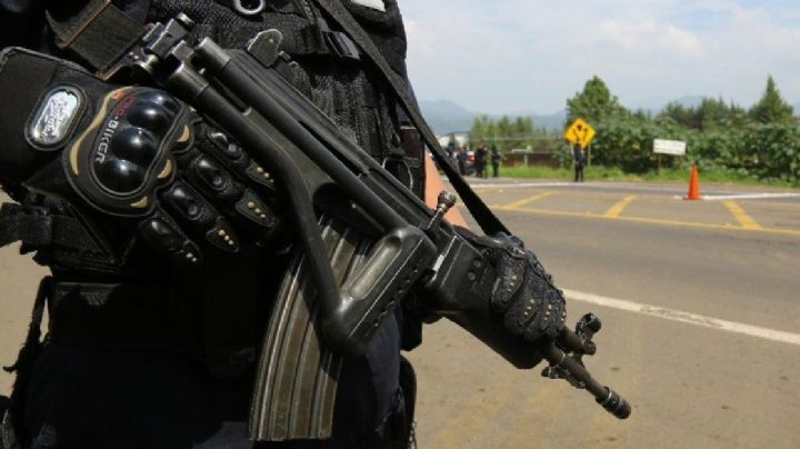 Tamaulipas: Mueren 8 miembros del Cártel del Noreste en enfrentamiento con el Ejército