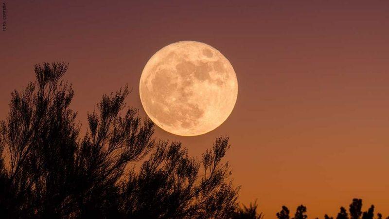 LA NASA revela cuándo se podrá ver la última 'Luna de maíz' de este verano