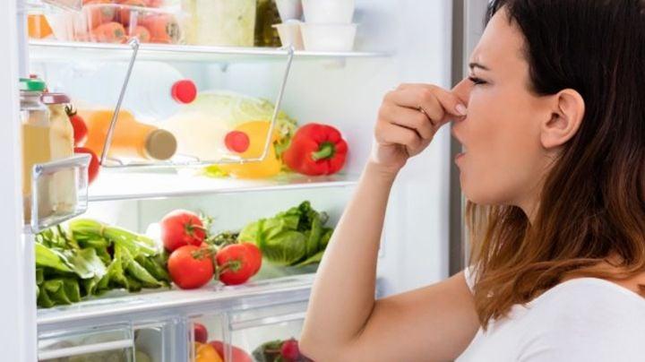 Estos consejos ayudan a eliminar el mal olor de tu refrigerador provocado por la humedad