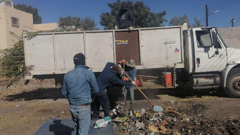 Ciudad Obregón: Dueños de predios que no les den limpieza serán sancionados
