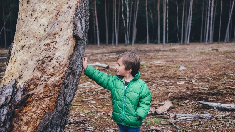 ¡Toma nota! De esta manera puedes detectar la inmadurez emocional en tus hijos