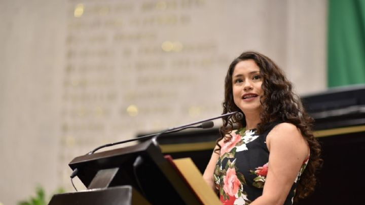 Diputada de Veracruz tacha de incongruente la falta de presupuesto para Fiscalías de Feminicidios