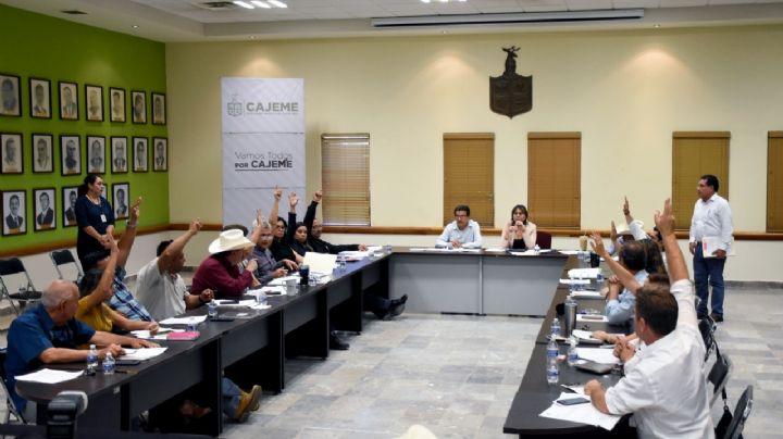 Regidores buscan regular el servicio de grúas en el municipio de Cajeme