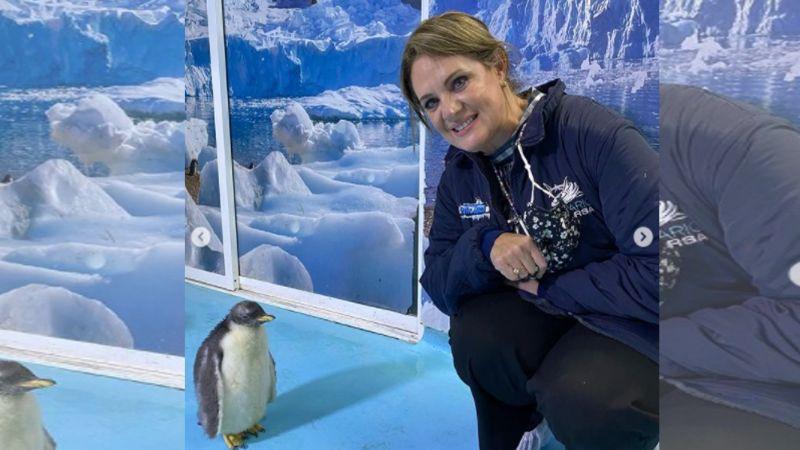 La actriz Érika Buenfil debuta como madrina del primer pingüino capitalino, se llama 'Alex'