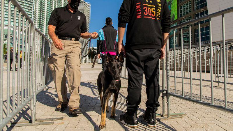 ¡Qué perrones! El Miami Heat utilizará canes que detectan el coronavirus