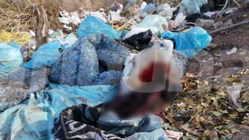 Macabro hallazgo en Cajeme: Encuentran cadáver a un lado de la carretera Internacional