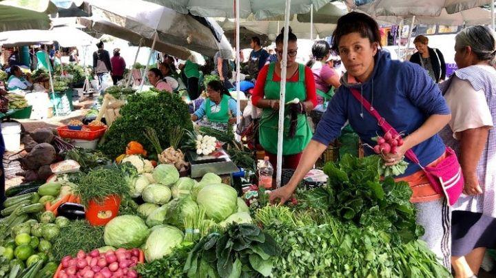 Agro mexicano continúa creciendo ante nuevos retos por venir