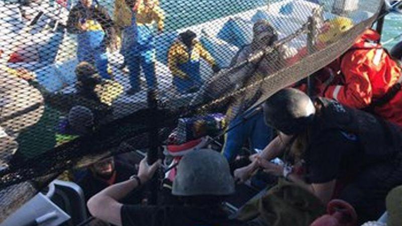 """Fallece pescador tras chocar contra barco en Baja California Sur: """"Malditos Sea Shepherd"""""""