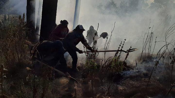 Tras 3 días de fuego, sofocan incendio forestal que consumió 500 hectáreas en el Iztaccíhuatl