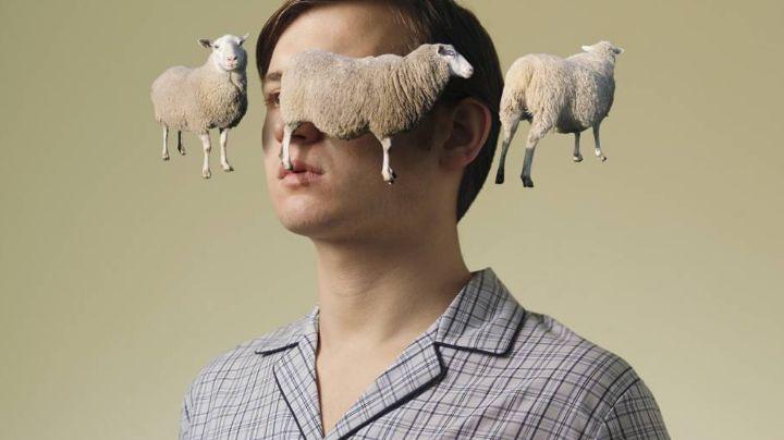 Afantasia: Incapacidad del ser humano para contar ovejas antes de dormir, según la ciencia
