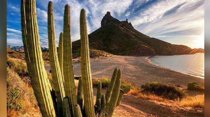 ¿Descenderán las temperaturas? Conagua presenta el estado del clima en Sonora