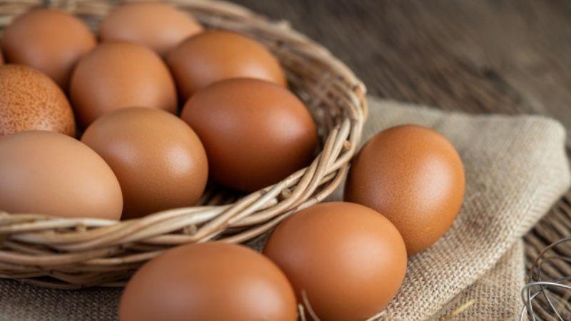 ¿Comes huevo todos los días? Conoce si este hábito es bueno o malo para tu salud