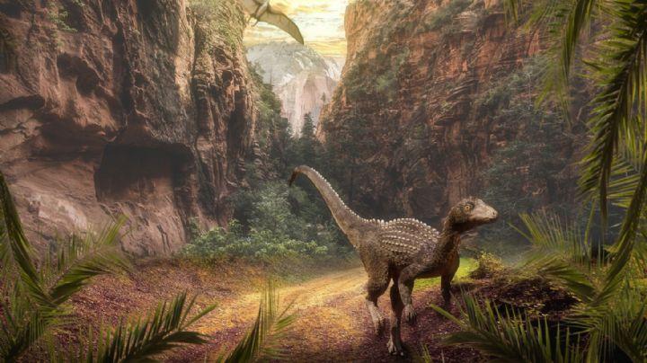 ¡Impactante hallazgo! Encuentran restos de nueva especie de dinosaurios en Argentina