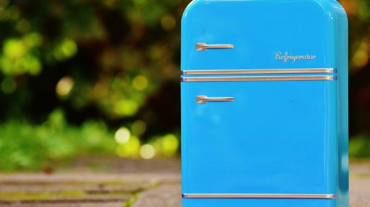 ¿Estás por comprar un refrigerador? Descubre cuáles son las características que debe tener