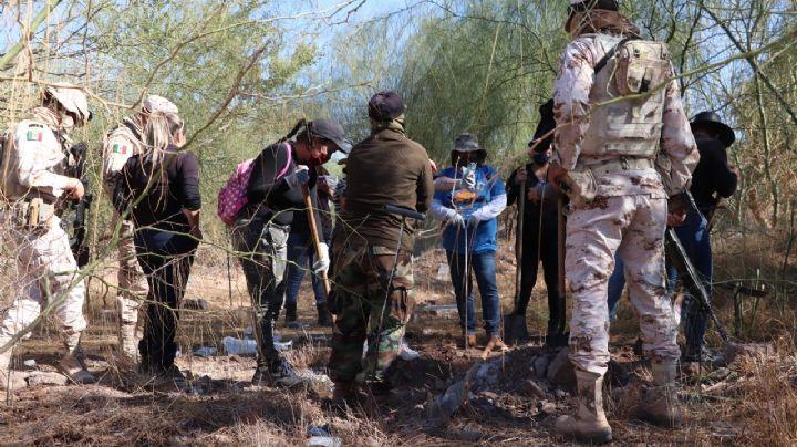 Nuevo hallazgo de las Rastreadoras de Obregón: Encuentran tres cuerpos en fosas