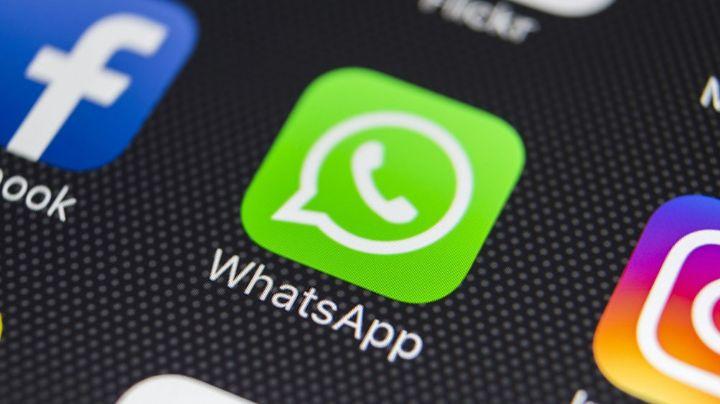 """""""No hay nada que se interponga"""": WhatsApp está dispuesto a seguir como la app favorita"""