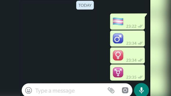 WhatsApp Web: Este maravilloso truco ayuda a descubrir los emojis ocultos