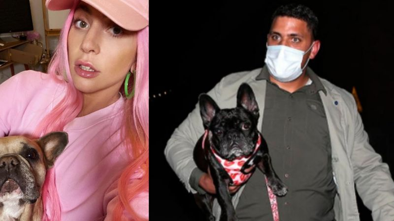 Ryan pasea a los 'bebés' de Lady Gaga y es baleado; secuestran a 'Koji' y 'Gustavo'