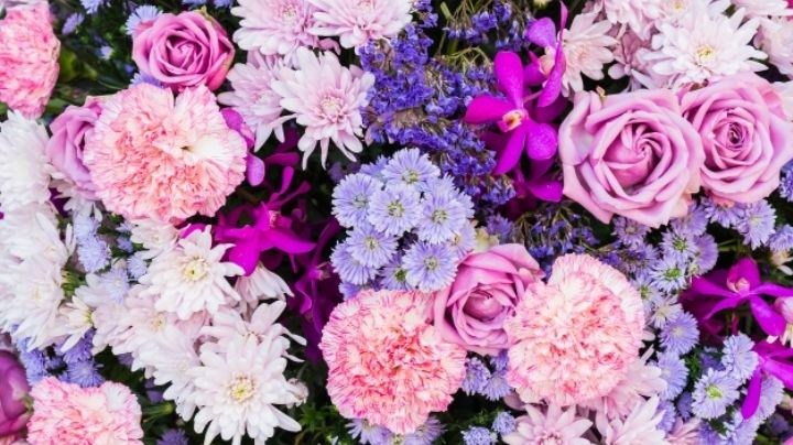 Mantén la belleza de las flores en tu hogar por mucho más tiempo al seguir estos consejos