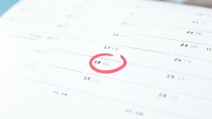 ¡Alcanza el éxito! Descubre cómo hacer un calendario de metas de forma fácil