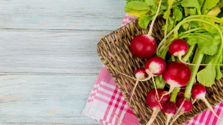Es delicioso y le da un toque de sabor a tu pozole: Descubre los beneficios del rábano