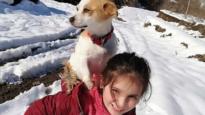 VIDEO: ¡Amor real! Niña camina kilómetros en el frío para ayudar a su mascota