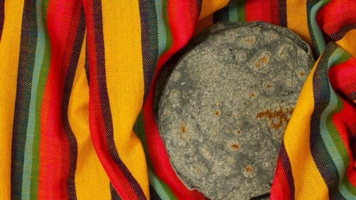 ¡Sorprendente! Descubre todos los tipos de tortilla que existen en México