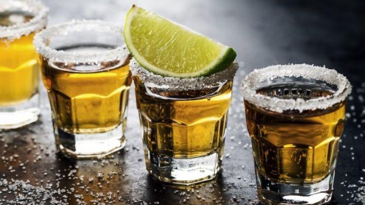El postre perfecto para adultos: Estas paletas heladas de tequila serán la locura