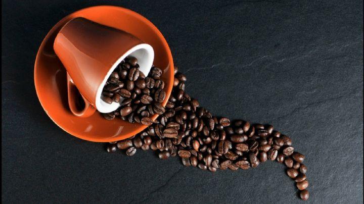 ¿Temes que la cafeína no te deje dormir? Descubre si eres sensible a esta sustancia