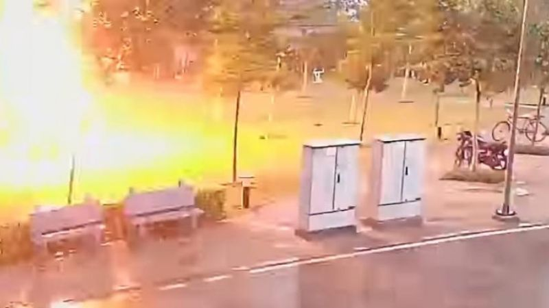 VIDEO: Rayo electrifica a 4 hombres que se refugiaban de la lluvia bajo un árbol