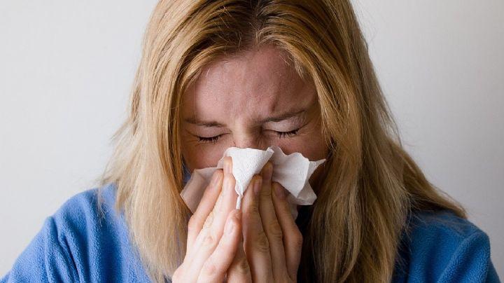 ¡Cuida tu salud! Descubre cuáles son los posibles síntomas de la alergia de ácaros