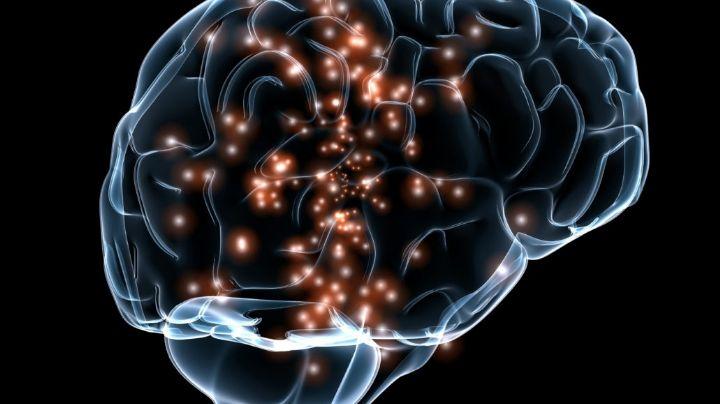 Descubren 'genes zombie' que se activan en el cerebro después de que una persona muere