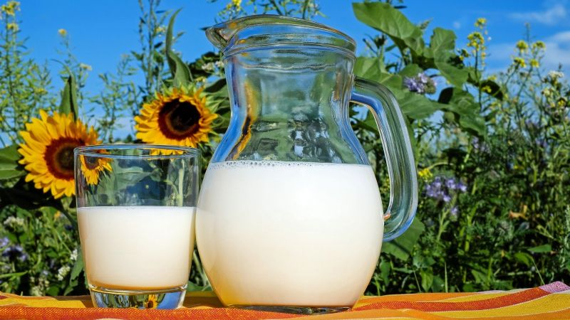 Esta leche de semillas de calabaza es ideal para gente fitness e intolerantes a la lactosa