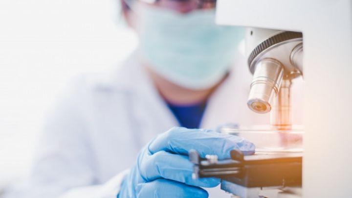 Expertos crean una nueva tecnología para detectar el cáncer en tan solo unos días