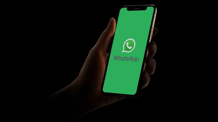 ¿Venden privacidad? WhatsApp es una aplicación gratuita y gana dinero de esta impactante forma