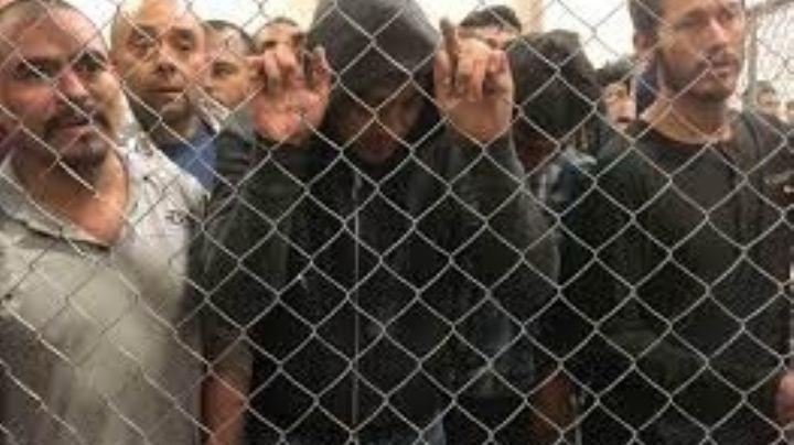 Inmigrantes rusos, iraquíes y sirios llegan a México para cruzar ilegalmente a EU