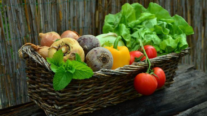 ¡Atención! Las verduras crudas aportan más beneficios que las cocidas según el IMSS