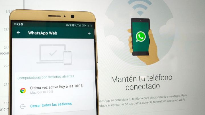¡Que no espíen tus chats! Controla desde tu celular los inicios de sesión en WhatsApp Web
