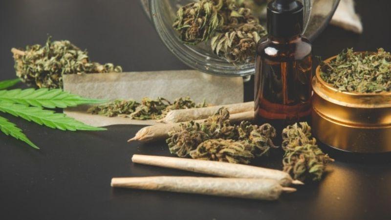 Un estudio revela la eficacia del uso de la marihuana medicinal para tratar la migraña