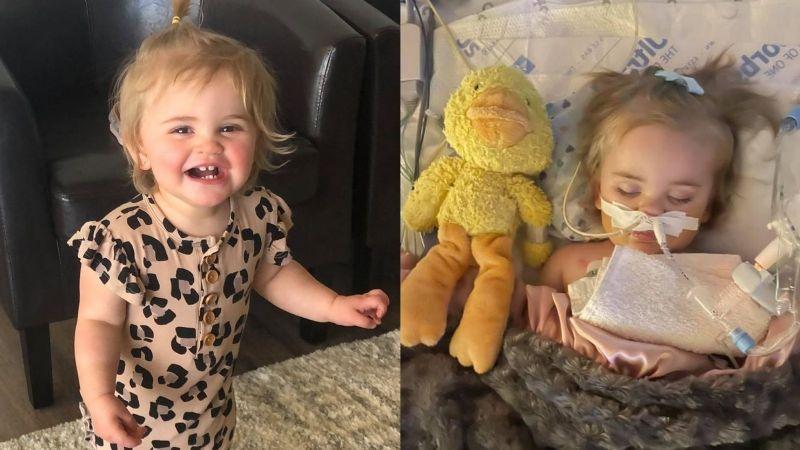 Bebé muere tras tragarse la pila de botón de un control de TV que le quemó la tráquea