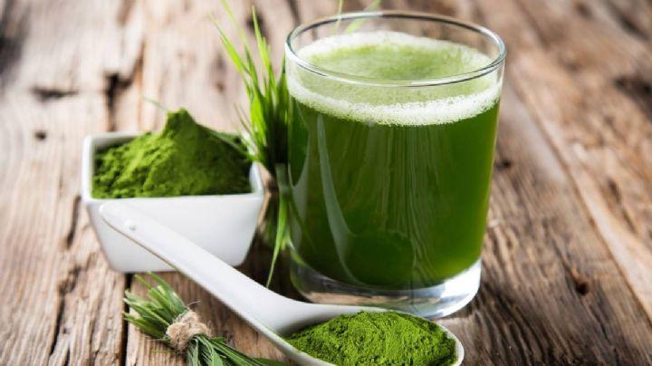 Asómbrate con las maravillas que puede hacer el alga espirulina por tu cerebro