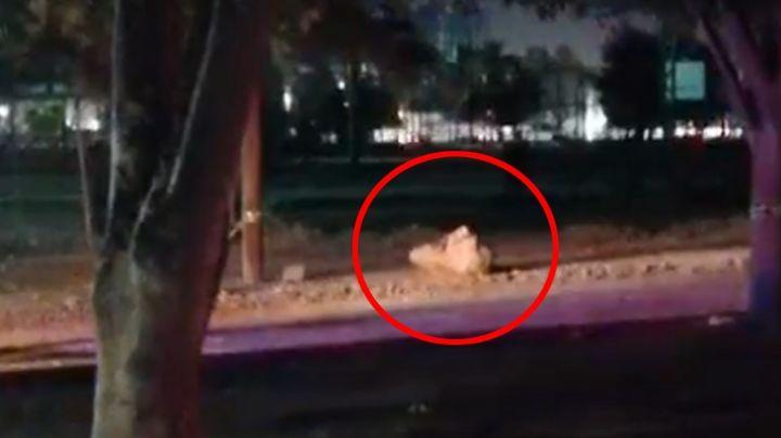 Identifican a cadáver 'encobijado' hallado en Ciudad Obregón; vivía en el Valle del Yaqui