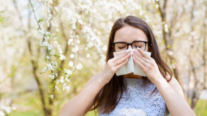 ¿Estornudos? Trata tus alergias a las flores en esta primavera con esos remedios