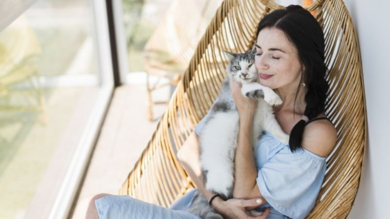Esta es la forma en la que puedes cuidar de tus muebles con un gato en casa