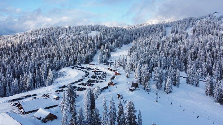 Niño de 12 años muere en un extraño accidente cuando esquiaba; chocó contra un árbol