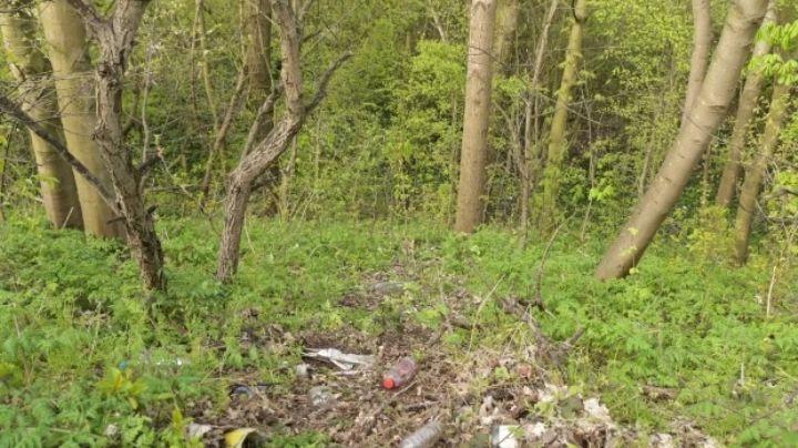 Macabro hallazgo: Huesos humanos son encontrados al lado de las vías del tren; son de un hombre