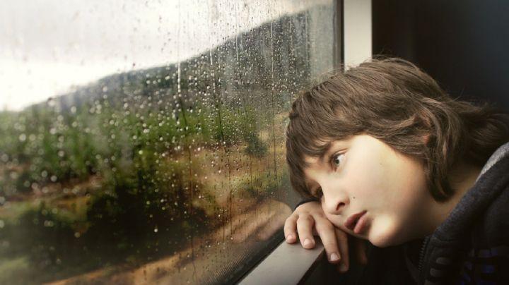 Educación infantil: ¿Cuándo es necesario llevar a tu hijo al psicólogo? descúbrelo